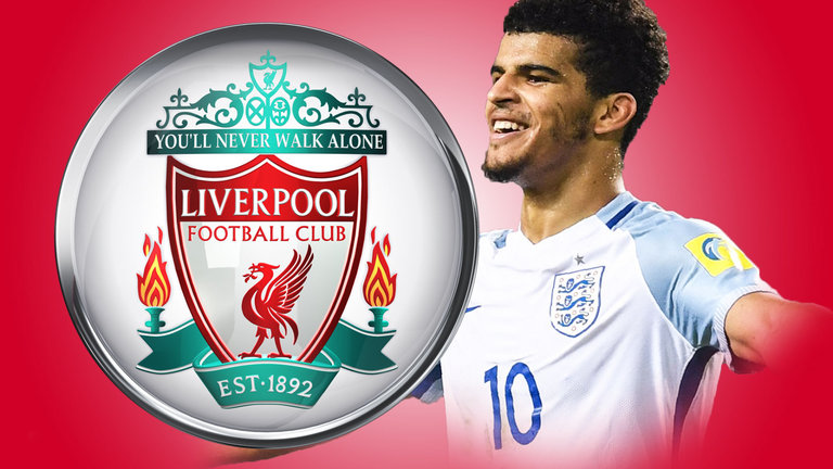 dominic-solanke-liverpool-england_3974979